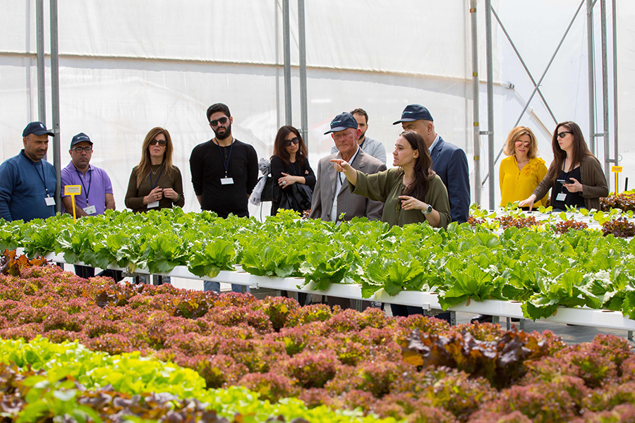 Famers Field Day - Water Saving Technologies NFT and hydroponics1.jpg