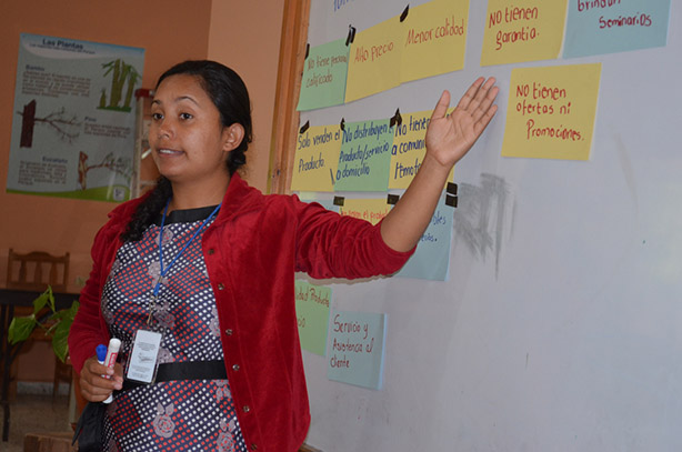 Woman conducting governance workshop
